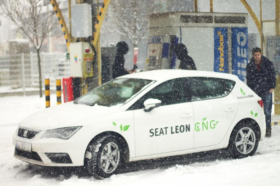 cng seat leon